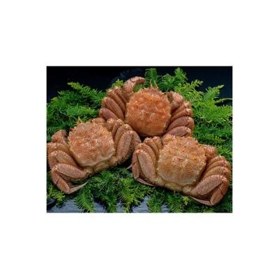 釧路市 ふるさと納税 北海道産 ボイル毛蟹3尾1.0kg[Ta503-C131]
