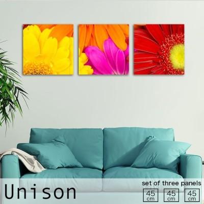 アートパネル Unison Mサイズ オレンジ 赤 黄 ピンク ガーベラ 花 母の日 植物 花束 かわいい おしゃれ 壁掛け 絵 生地 オシャレ