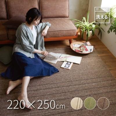 高機能ダイニングラグ タイプフォー 約220×250cm(約3.5畳) 洗える ホットカーペット床暖房対応 滑り止め付き 防ダニ 抗菌・抗ウイルス シンプル