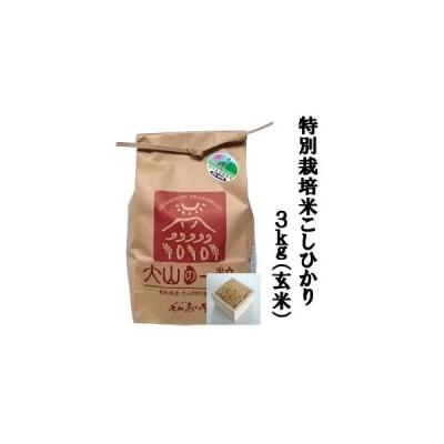 ふるさと納税 MS-13 特別栽培米こしひかり3kg(玄米) 鳥取県大山町