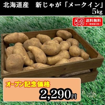 送料無料 北海道産 メークイン 約5kg 新じゃが じゃがいも 馬鈴薯