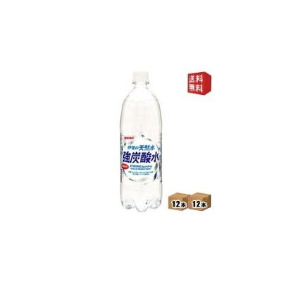 送料無料 【炭酸充填量5.0GV】 サンガリア 伊賀の天然水 強炭酸水 1Lペットボトル 24本(12本×2ケース)