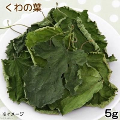 USAYAMA 国産 くわの葉 5g 小動物のおやつ 無添加 無着色 (ハムスター 餌)