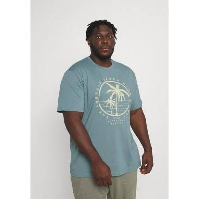 エスオリバー Tシャツ メンズ トップス Print T-shirt - frosty blue