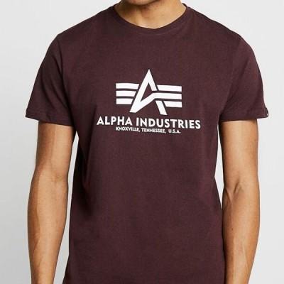 アルファインダストリーズ メンズ ファッション RAINBOW - Print T-shirt - deep maroon