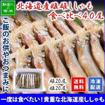 北海道 ししゃも 本物 40尾 雌雄 食べ比べ お取り寄せ グルメ ギフト 海鮮 父の日 魚 プレゼント 2021年 冷凍