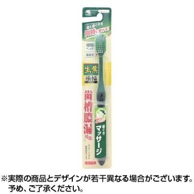 ハブラシ 生葉 極幅ブラシ ふつう 1本 ×1個