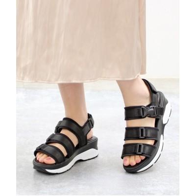 Xti Shoes / Lirio blanco 3連ベルト スポーツサンダル WOMEN シューズ > サンダル