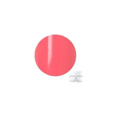 Bellaforma(ベラフォーマ) カラージェル  4mlF055 カーネーション