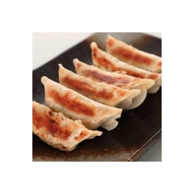 大野城市 ふるさと納税 ラー麦の皮で包んだ餃子100個 (50個入×2袋)