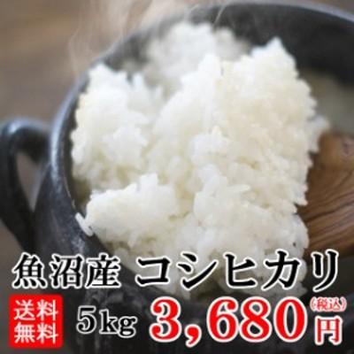 令和2年産  送料無料 魚沼産コシヒカリ 5kg 北海道・九州・沖縄へは追加送料がかかります。