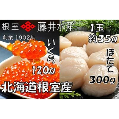 【北海道根室産】いくら醤油漬120g・お刺身帆立貝柱300g A-42048