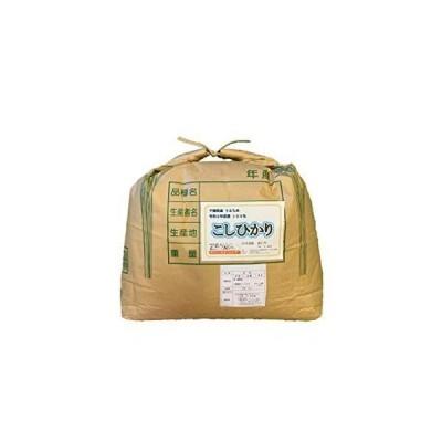 千葉県産 やみつき米こしひかり 玄米(Brown Rice) 15kg 令和2年度産100%