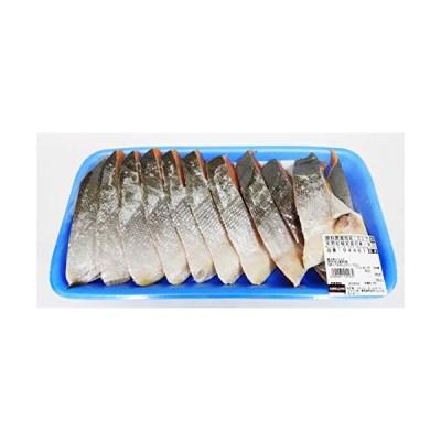 天然紅鮭定塩切身 甘口 ロシア産 1300g前後 冷凍