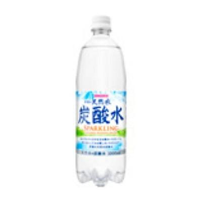 伊賀の天然水 炭酸水1L×12本