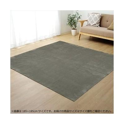 ラグ カーペット (ホットカーペット対応) 『イーズ』 グレー 約185×240cm 3畳 3963529 (APIs)