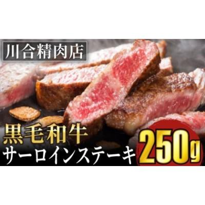 TB0-20 川合精肉店黒毛和牛(福島牛)サーロインステーキ用250g