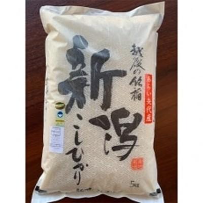 【令和2年産】新潟県矢代産コシヒカリ 5kg
