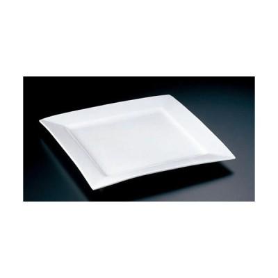 ミヤザキ食器 大皿 ホワイト L