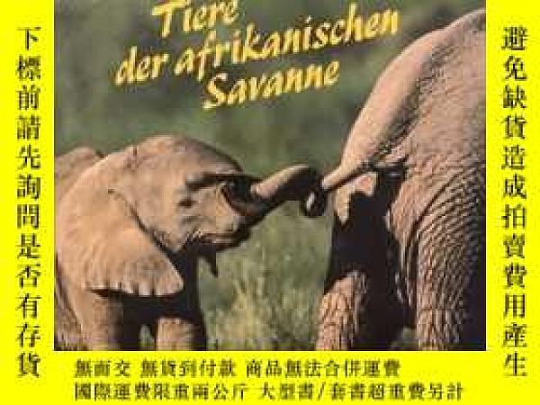 二手書博民逛書店德語原版《非洲大草原動物》Tiere罕見der afrikanischen SavanneY436907 Wi