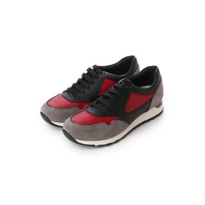 ジェオックス GEOX SNEAKERS (BLACK/DK RED)