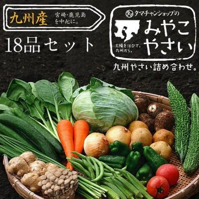 【送料無料】九州野菜18品詰め合わせセット★九州の美味しい野菜をタマチャンショップが選りすぐりで18品詰めてお届け★
