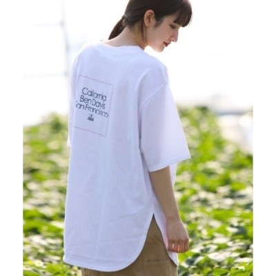 tシャツ Tシャツ 《BEN DAVIS》LADIES ORGANIC COTTON TEE/抗菌防臭/オーガニックコットン