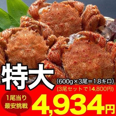 毛ガニ 毛蟹 666g前後×3尾 特大(けがに kegani カニ味噌 かにカニ 蟹 かに カニ)(ボイル加熱済み)