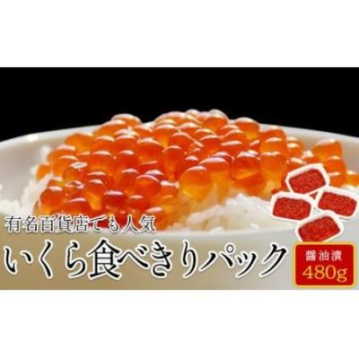 M8 【丸鮮道場水産】 北海道産いくら醤油漬け食べ切りパック詰合せ(L)(計480g)M8