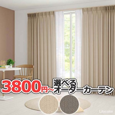 カーテン シェード リリカラ LIETA リエッタ ドレープ ET519 レギュラー縫製 2倍ヒダ 幅67×高さ100cmまで
