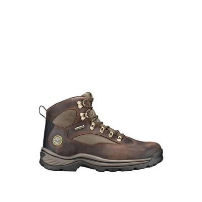 ティンバーランド メンズ ブーツ・レインブーツ シューズ Chocorua Trail Boot