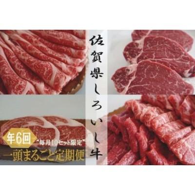 (佐賀県産しろいし牛)1頭まるごと定期便(毎月10セット)