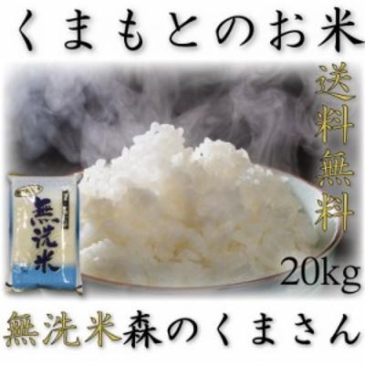 米 20kg 九州 熊本県産 森のくまさん 無洗米 令和元年産 送料無料 5kg4個 精白米 くまもとのお米