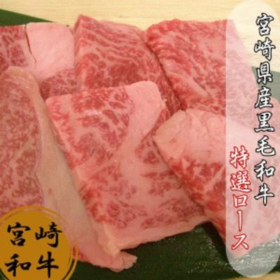 宮崎県産黒毛和牛特選ロース100g 肉 送料無料
