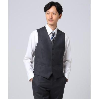 【タケオキクチ】 シャドーオルタネイトストライプ ベスト メンズ チャコール グレー 02(M) TAKEO KIKUCHI