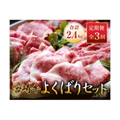D30 《3か月お楽しみ定期便》宮崎牛よくばりセット(合計2.4kg)都農町加工品
