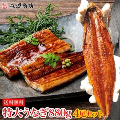 タイムセール 特大うなぎ蒲焼き 約880g (220g×4尾) 4本 山椒鰻たれ付 中国産 ギフト お歳暮 お祝い