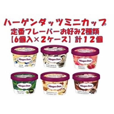 ハーゲンダッツミニカップ 定番フレーバー お好み2種類【6個入×2ケース】計12個 アイスクリーム