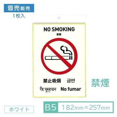 ポイント5%UP中!国内初!6カ国語対応ピクトグラムシール ピクシル 禁煙 ホワイト B5 英語・中国語・韓国語・ヒンディー語・スペイン語 1枚入