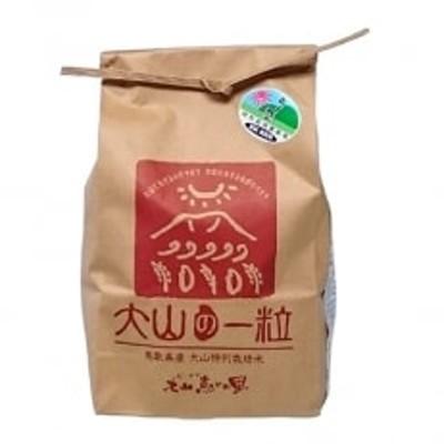 特別栽培米こしひかり3kg(玄米) MS-13