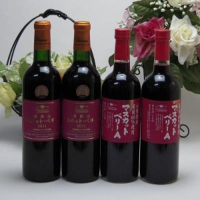 シャンモリマスカット・ベリーーA赤ワインセット 山梨県産ぶどう100% 樽熟成マスカット・ベリーーA2本 マスカット・ベリーーA2本 720