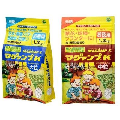 マグァンプ K お徳用1.3kg