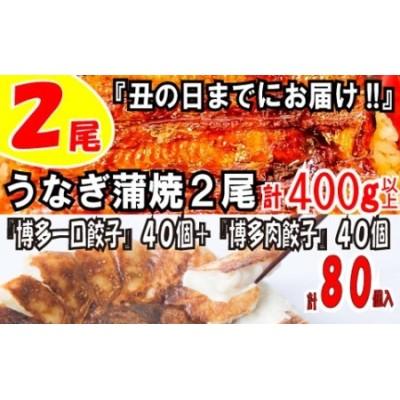 AE72.うなぎの蒲焼2尾&2種の餃子(計80個)【モリモリ!食いしん坊セット】