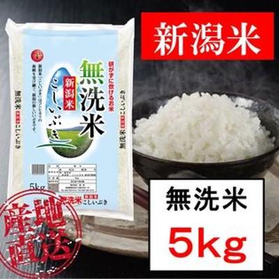 新米【5kg】無洗米 新潟産こしいぶき 令和2年産