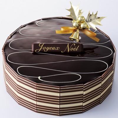 チョコレート クリスマスケーキ ヴィタメール ショコラ サンバ 15cm