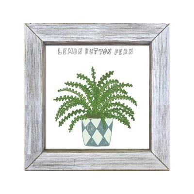アートフレーム 光触媒アート Home Plants LEMON BOTTON FERN