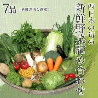 【送料無料】西日本産の旬の新鮮野菜詰め合わせ 7品(新鮮野菜を直送)野菜セット 野菜詰め合わせ 新鮮野菜 旬の野菜 季節の野菜 やさい 詰め合わせ セット お取り