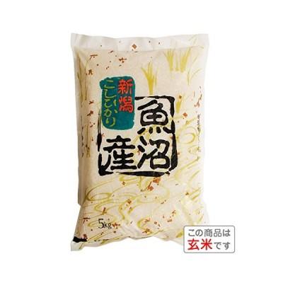 玄米新潟県魚沼産 コシヒカリ(令和元年産) 5kg