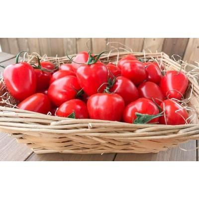 【お試し】幻のミニトマトトマトベリー 800g H004-026