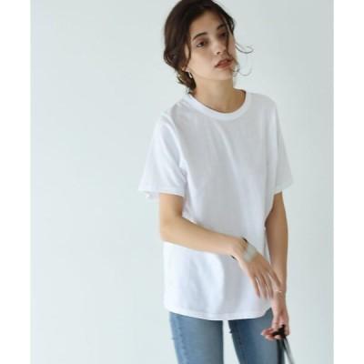 tシャツ Tシャツ BASIC TEE